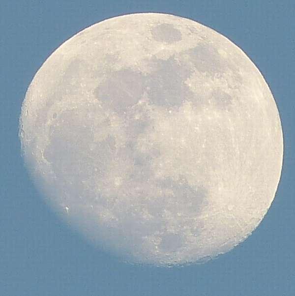 月が昼間から綺麗です