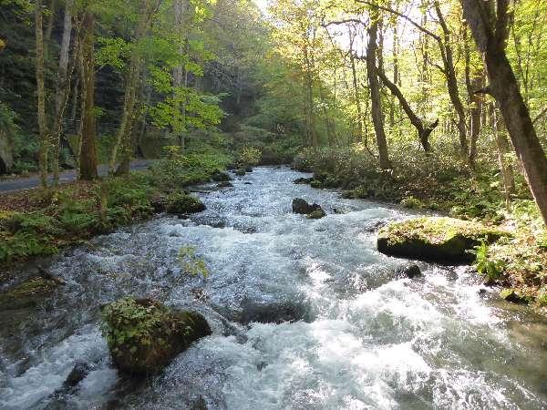 奥入瀬渓流紅葉までもう少し
