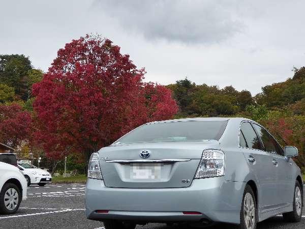 十和田湖駐車場一部紅葉