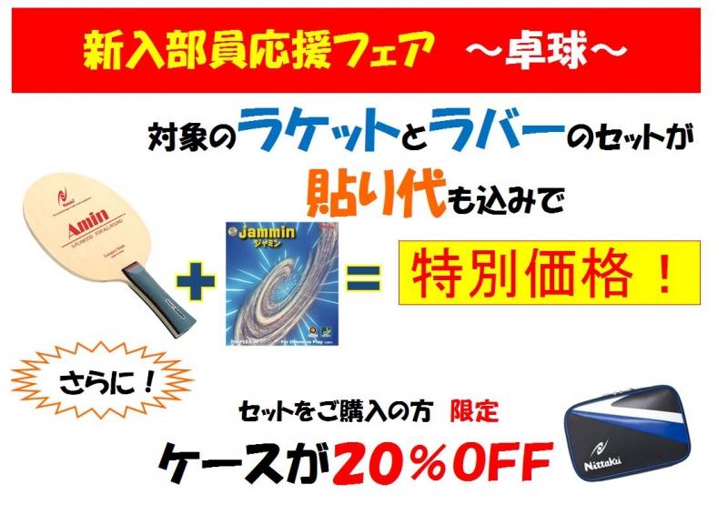 新入部員応援フェア卓球.JPG