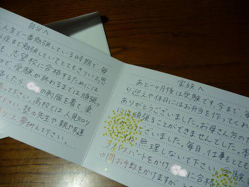 しぇてぃからの手紙