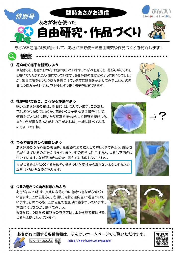 2020あさがお通信(臨時:自由研究)-1.jpg