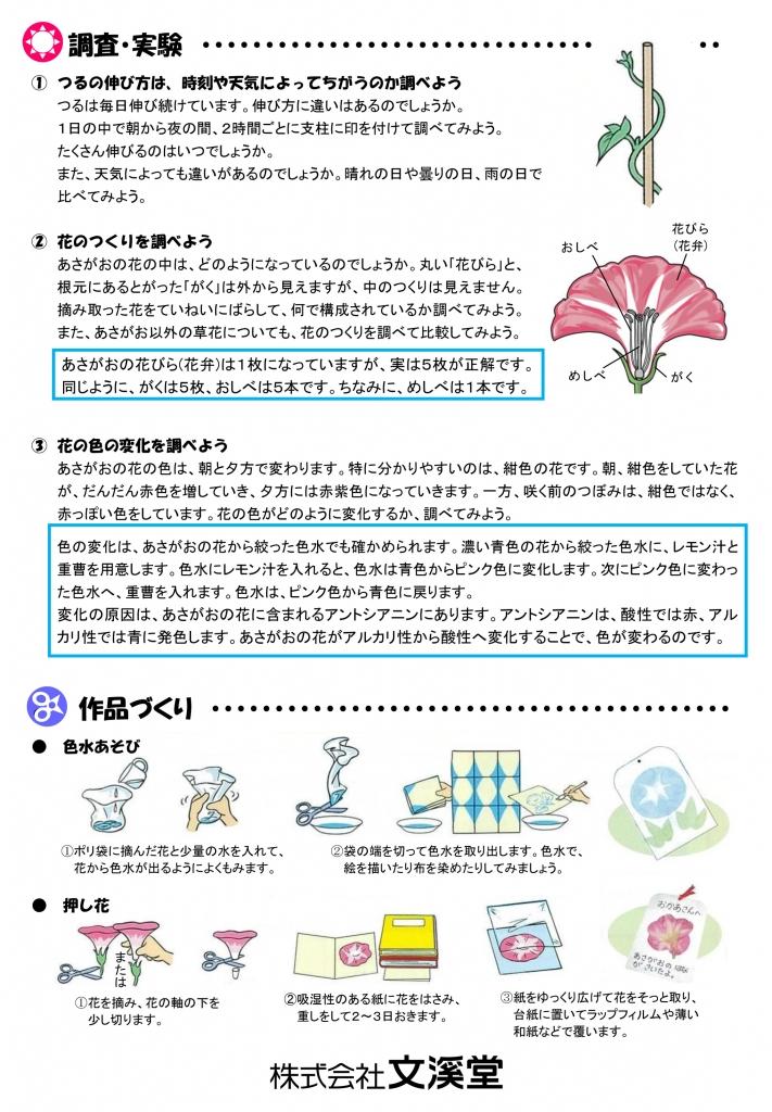 2020あさがお通信(臨時:自由研究)-2.jpg