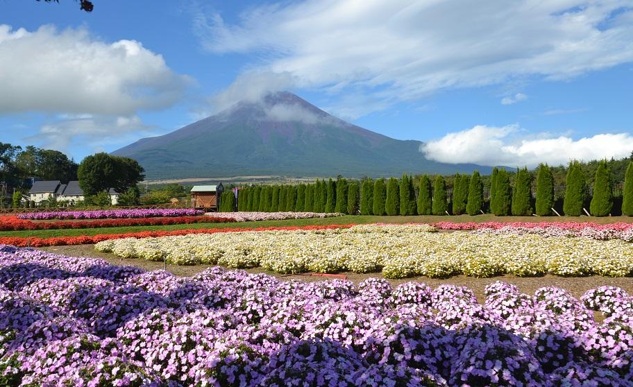 富士山サンパチェンス