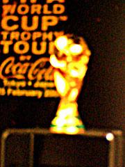 ワールドカップトロフィー