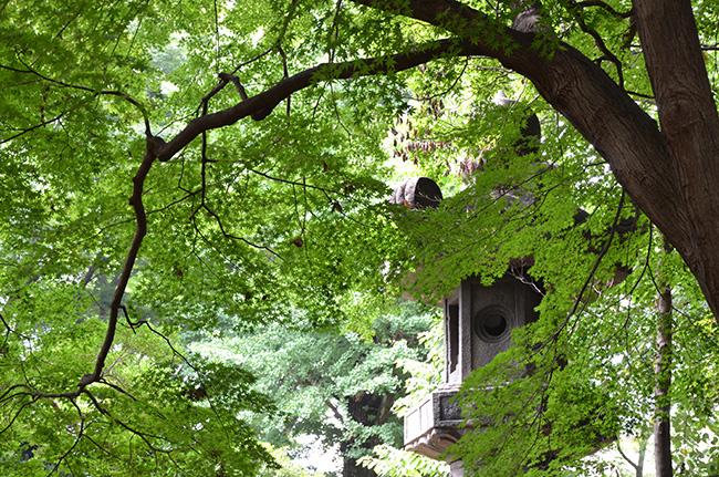 お化け灯籠/上野公園