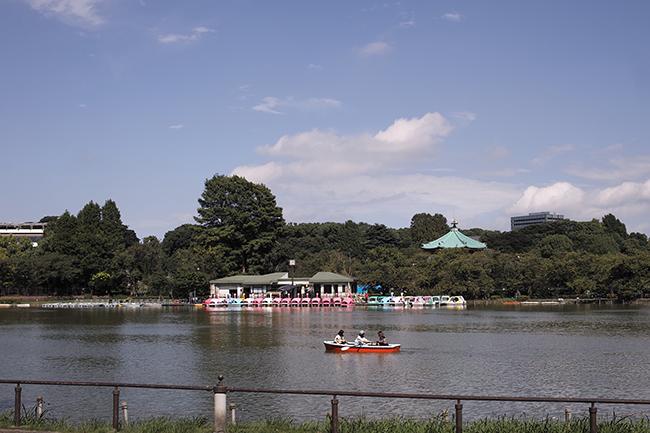 初秋の不忍池ボート池