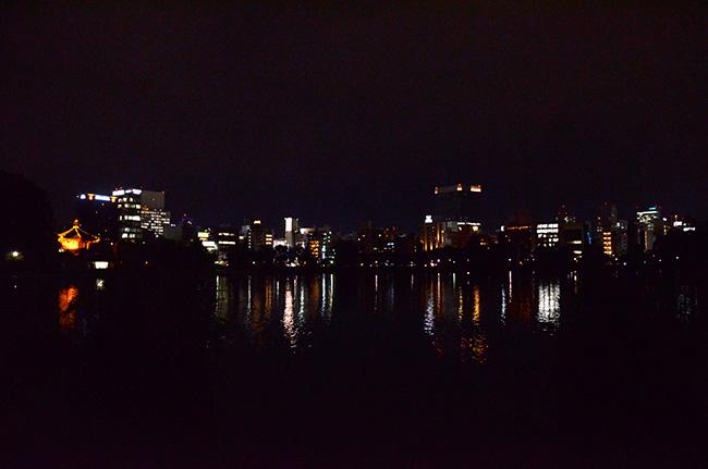 不忍池の夜
