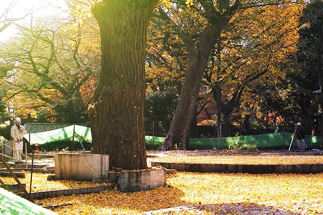 上野こども遊園地の跡