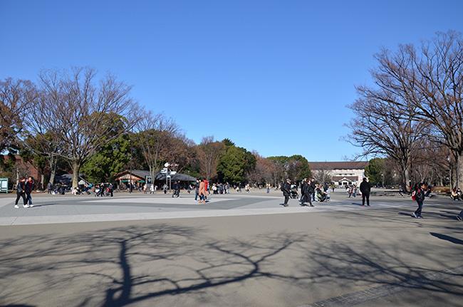 2017年12月30日の上野公園の噴水前広場