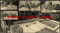 JCPG原稿