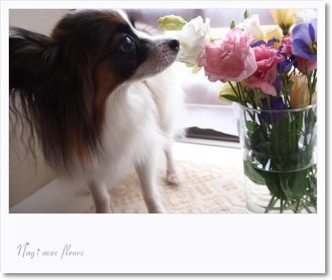 凪とお花.jpg