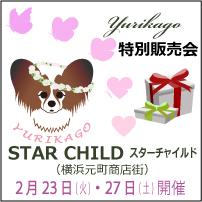 starchild201602.jpg