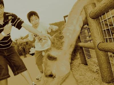 20050429-0501 奈良 和歌山家族旅行01 033.jpg