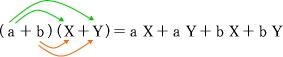 多項式の展開