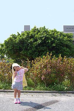 琉球大学医学部附属病院の前