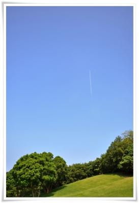 真上に伸びる飛行機雲