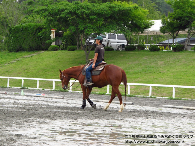 八ヶ岳ホースショー2012