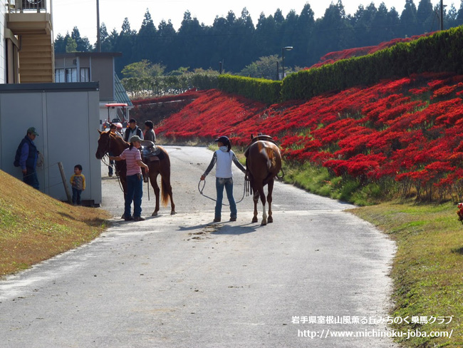 All Open Horse Show 2012 大会前日 岩手県室根山風薫る丘みちのく乗馬クラブ