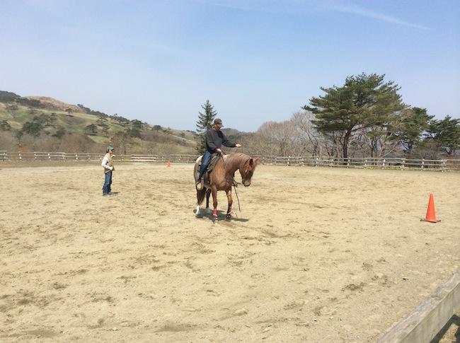 岩手県室根山風薫る丘みちのく乗馬クラブ