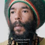 結局、Congo Natty って?