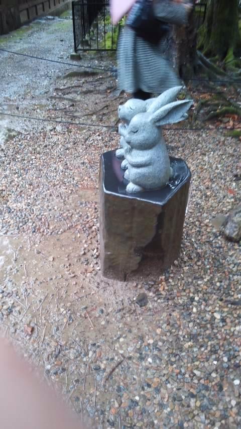 ウサギたち♪.jpg