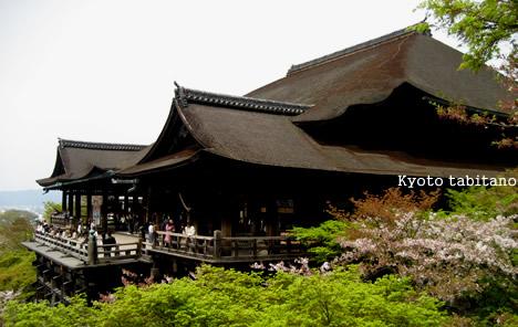 清水寺と桜