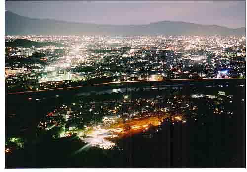 嵐山モンキーパークの夜景