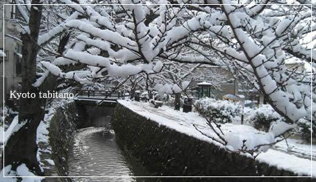 哲学の道 雪