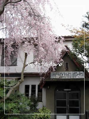 銀月アパートメント 桜