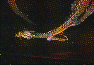 天を舞う龍