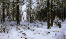シーシキン《冬》(1890)