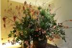 トーハク生け花