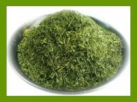 農薬不使用・無添加・有機肥料で育てた素朴な煎茶