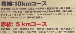 ピンクリボンスマイルウオーク2008神戸