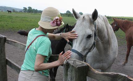 お馬の親子