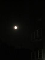 中秋の名月?