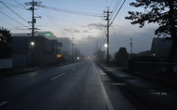 2018-12-17 2918-12-17 霧の朝 007.JPG