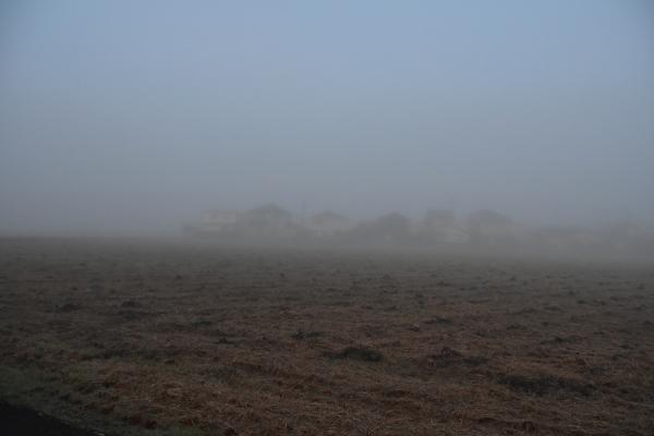 2018-12-17 2918-12-17 霧の朝 030.JPG