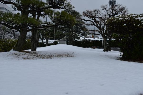 2019-02-11 雪の日の後楽園 046.JPG