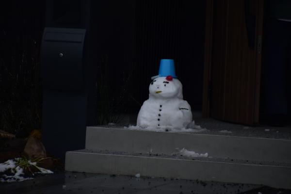 2019-02-11 雪の日の後楽園 151.JPG