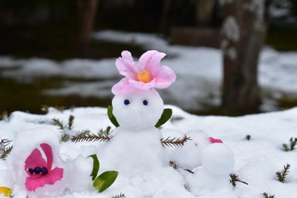 2019-02-11 雪の日の後楽園 167.JPG