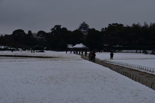 2019-02-11 雪の日の後楽園 181.JPG