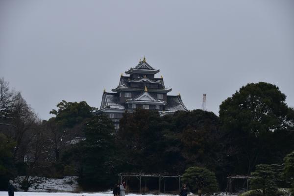 2019-02-11 雪の日の後楽園 374.JPG