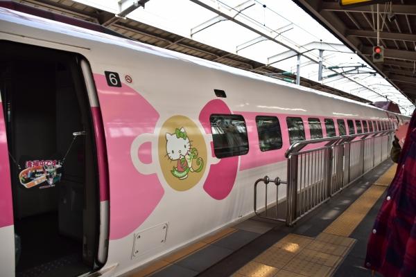 2019-02-16 キィテイ列車 026.JPG