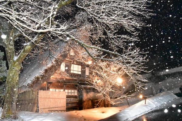 2019-02-16 五箇山 310.JPG