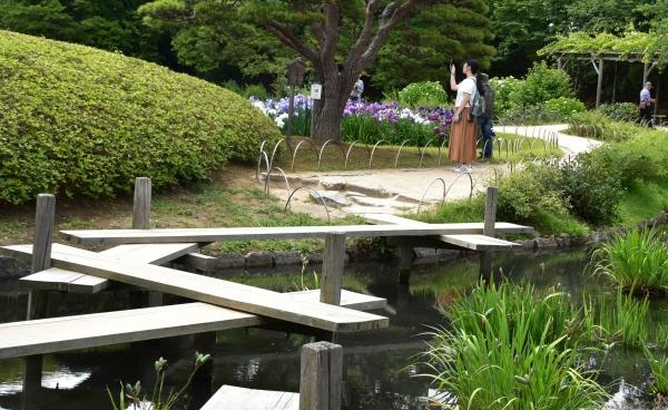 2019-06-09 後楽園お田植え 123.JPG