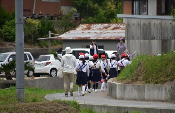 2019-06-14 山田菖蒲園 018.JPG