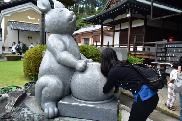2019-06-16 京都三室戸寺 062.JPG