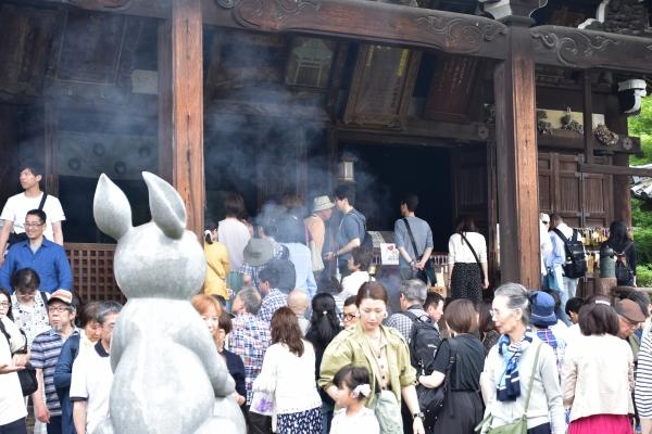 2019-06-16 京都三室戸寺 067.JPG
